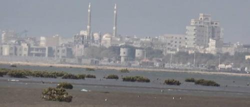 الحوثيون يصفون أحد أبرز قادتهم الميدانيين في الحديدة