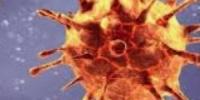 أخر مستجدات فيروس كورونا في اليمن