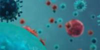 لجنة كورونا : تسجيل إصابة جديدة بالفيروس في المكلا