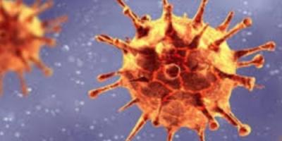 لجنة كورونا: 54 ضحية جديدة للفيروس الوبائي
