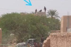 مليشيا الاخوان تعتقل نائب رئيس الانتقالي بميفعة وعدد من المواطنين