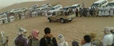 قبائل شبوة تجمع على ضرورة التصدي لميليشيا الحوثي